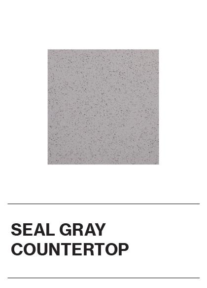 Seal Gray Countertop